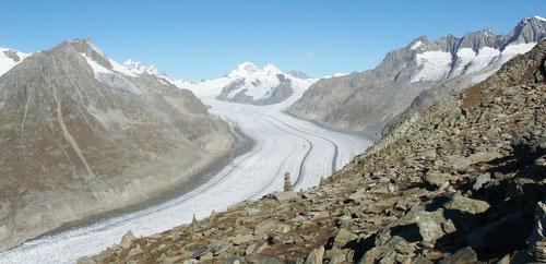 Blick auf den Aletschgletscher.