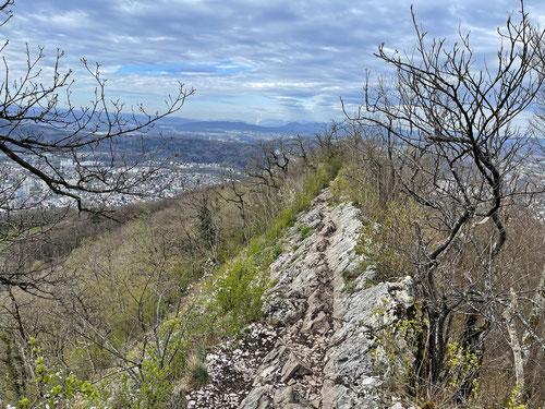 Der rot-weisse Wanderweg am Lägernsattel
