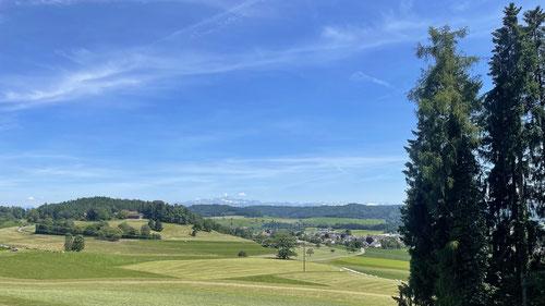 Zwischen Aadorf und Eschlikon.