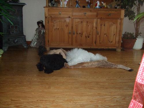 RieKe & Molly