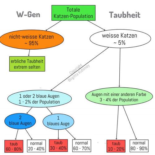 W-Gen und Taubheit
