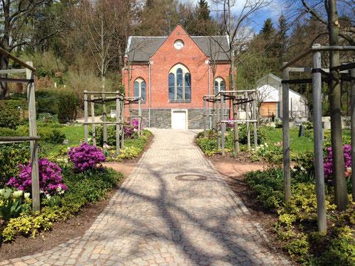 Foto: Friedhof Planitz   - Neupflanzung von Linden, Sträuchern und Bodendecker