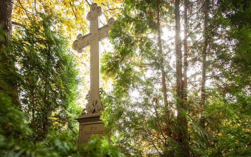 Fotos: © Friedhof Planitz