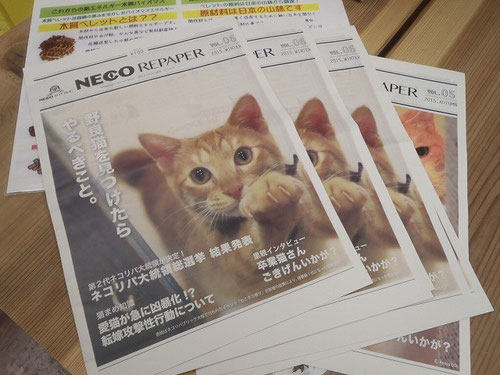 NECO REPAPER 2015.WINTER
