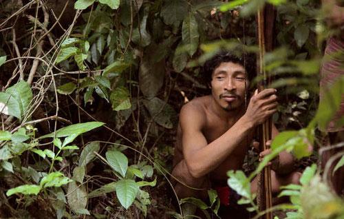 Los awás cazan en sus tierras ancestrales, en el nordeste de la Amazonia brasileña. © Survival