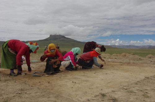 Trabajos de excavación en Newa Devu. Foto (CC): Yingshuai Jin /SINC