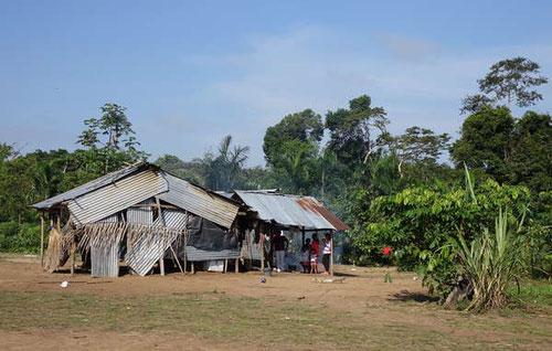 Los nukaks malviven en refugios improvisados con techos de zinc y dependen de las limosnas del Gobierno. Son uno de los pueblos indígenas más amenazados de Colombia. /Survival
