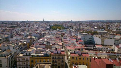 Vistas de la ciudad desde el mirador de la Torre de los Perdigones. © Lupe Rangel