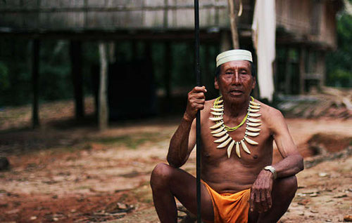 Desde el contacto los matsés han padecido enfermedades, especialmente la malaria, que sus plantas medicinales no pueden curar.  © Survival