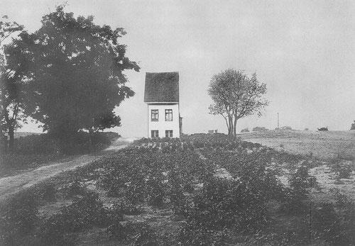 """Das """"schmale Handtuch"""", Müllerstr. 83, Foto von 1891"""