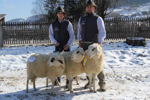 Nachzuchtgruppe - weibliche Jungtiere - geb. 1. Halbjahr 2012