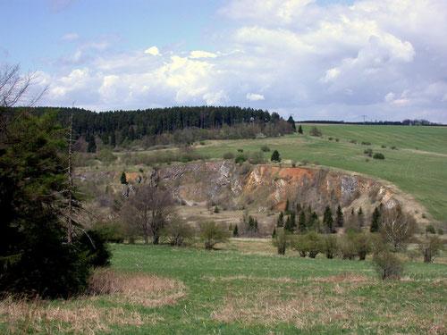 Ehemaliger Steinbruch Garkenholz bei Hüttenrode