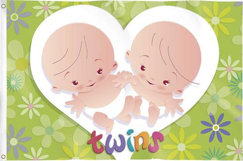 "Gevelvlag ""Twins"" 90x60 cm € 4,99"