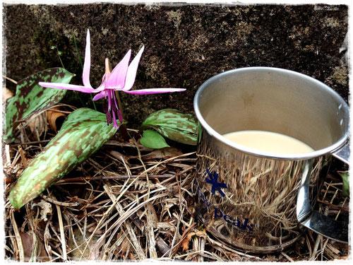 カタクリの花とカフェラテ