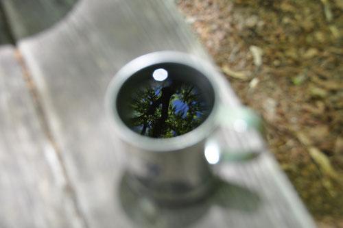 コーヒーの水面に写る日光の森