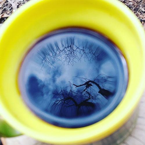 コーヒーの水面に写る流れる雲と木々
