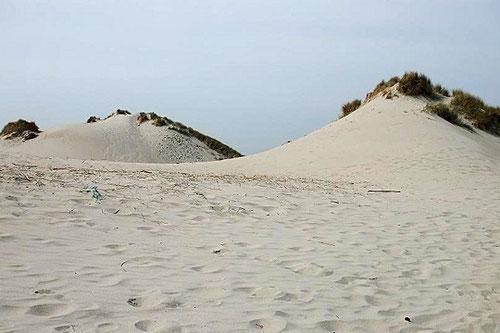 dunes  de sable fin