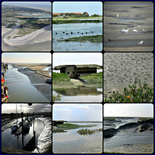 Pointe du Hourdel -le Hourdel -Aigrettes - Empreintes sur le sable - Hutte en baie de somme- Les grandes marées en Baie de Somme