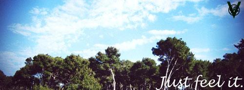 WELLNESS KAJO WEB 画像
