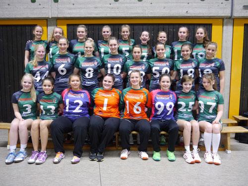 Die Spielerinnen der 3.Damen, weiblichen A- und B-Jugend in der Saison 2013/2014