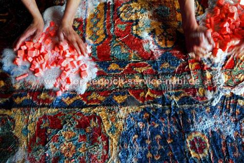 TeppichMottenbehandlung, Teppichmotten fraß beseitigen