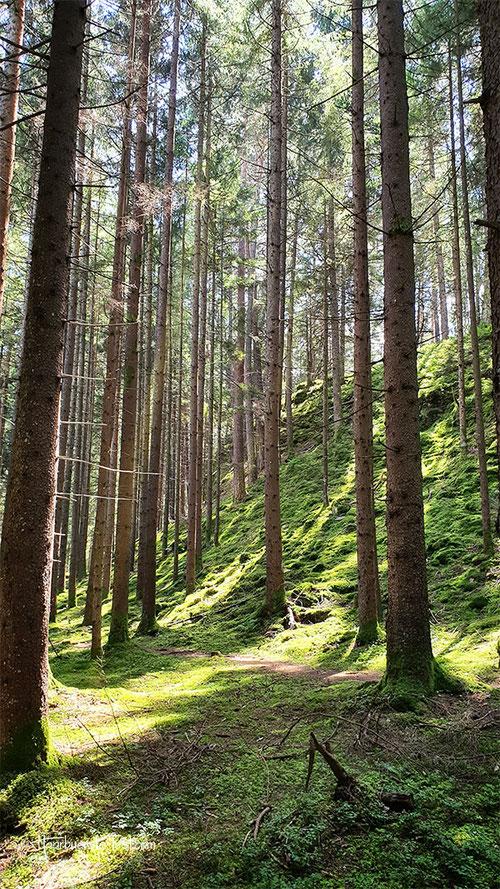 zwergsee slow trail, millstätter see