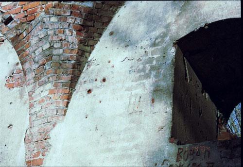 Balga 1999