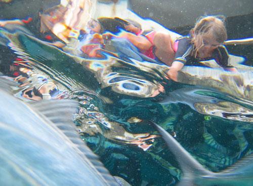 Lina beim Fischefüttern