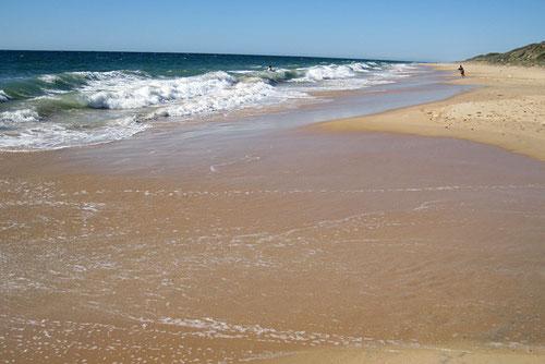 Strand von Dalyellup