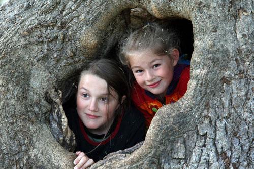 David und Lina im Limonadenbaum