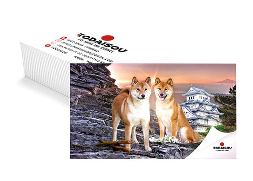 business cards kennel design; shiba inu kennel todaisou design; luxury shiba inu business cards design;