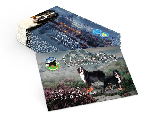 Bernese Mountain dog Ukraine; Mountain Guars kennel; creative business cards design; dogs kennel business cards layout template design; Ukraine; PRS LA BEAUTY;