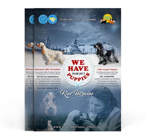dogs advertising ideas; best luxury dogs advertising design; best elegant dogs pets presentation design order; English cocker spaniel advertising poster; Sunfirest Soul Kennel; FCI; UKU; Ukraine; design; template; price; order; online; PRS LA BEAUTY