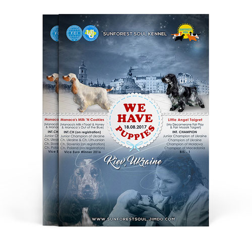 dogs advertising ideas; best luxury dogs advertising design; best elegant dogs pets presentation design order; English cocker spaniel advertising poster; Sunfirest Soul Kennel; FCI; UKU; Ukraine; design; template; price; order; online; PRS LA BEAUTY