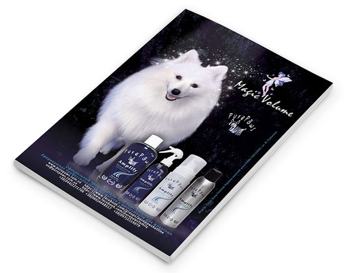 dogs models; white dogs models for shooting filming Kiev Ukraine; japanese spitz dog model photo video shooting filming; Japanese spitz SIMBA TSAR ZVEREI model; Pure Paws advertising photo amplify line Magic volume; Pure Paws Ukraine photo; Yuliya Strizhk