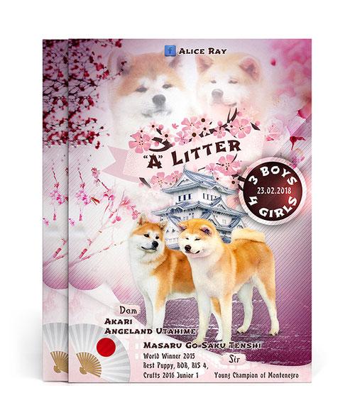 poster template; pink; Japanese style poster; asian poster template; dogs pink asian japanese presenation design; Japanese Akita poster presentation litter design; PRS LA BEAUTY;
