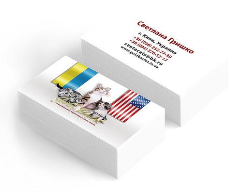 PRS LA BEAUTY; pitomnik koshek kotov vizitki; Gold Bastet; Ukraina; razrabotka disain vizitki zhivotnie; krasivie vizitki zhivotnie; belie vizitiki; kreativnie vizitki koti zhivotnie; USA;