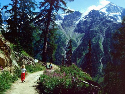 Das eindrucksvolle, 3934 m hohe Bietschhorn vom Lötschentaler Höhenweg