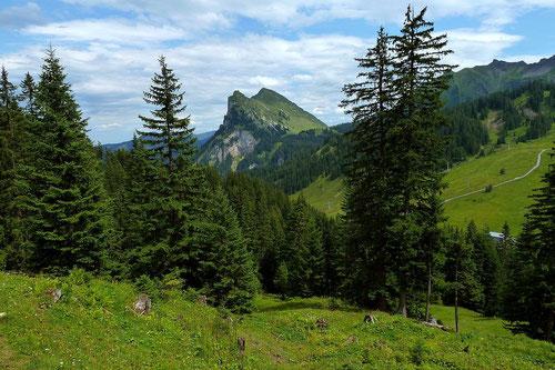 Kanisfluh vom Weg Roßstelle - Wildguntenalpe