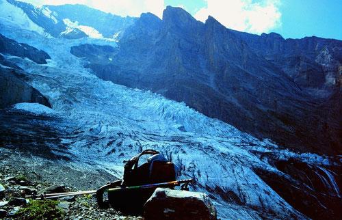 Balmhorngletscher von der orogr. rechten Seitenmoräne oberhalb der Balmhornhütte.