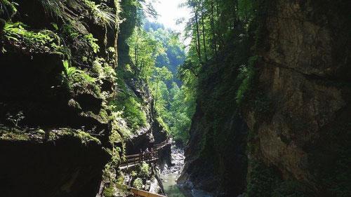 Im Alploch nach der Rappenlochschlucht zur Mittagszeit im August 2013