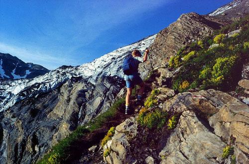 Steiler Aufstieg von der Gfällalp  zum Lötschengletscher hinauf.
