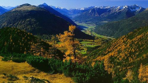 Goldener Herbst am Holzleiten-Sattel, Lehnberg und Arzberg beim Aufstieg zur Wankspitze.