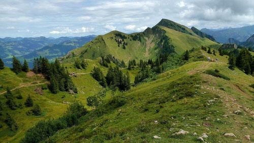 Tristenkopf und Winterstaude vom Panorama-Rundweg Niedere. Der Weg umrundet eine wannenartige Mulde mit Dolinen.