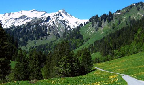 Im Obertal beim Engeratsgundhof