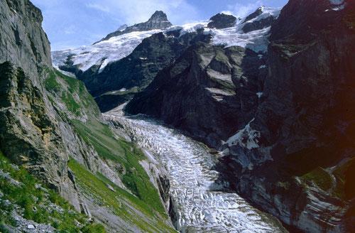 Der obere Grindelwaldgletscher vom Anstiegsweg zur Glecksteinhütte im Jahr 1992.  Seitdem starker Gletscherrückzug, wie das Foto auf der Homepage von www.http://www.dreamstime.com/ erkennen lässt.