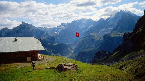 Alpe Obere Allme gegen Blümlisalp und Oeschinensee