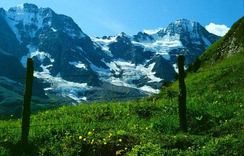 Hinter dem Zaun beginnt der Höhenweg unter'm Tanzbödeli nach Obersteinberg.