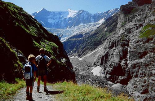 Fiescherhörner und Zunge des Unteren Grindelwaldgletschers vom Weg zur ehem. Stieregghütte und nach Rots Gufer. Das Eis der Gletscherzunge ist bis auf einen Rest beim Zusammenfluss von Fieschergletgscher und Unterem Eismeer  weggeschmolzen.