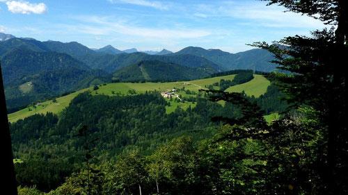 Der Krotenberg mit dem Sender und dem großen Wiesen- und Weidegebiet des Bauernhofs Marbachler